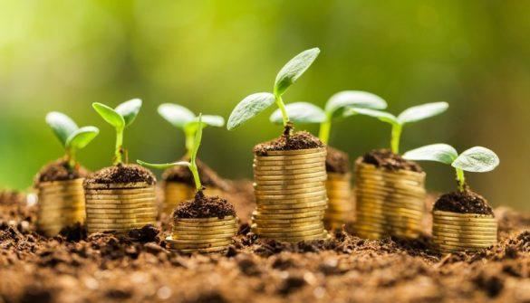 تصویر سکه هایی که در خاک اند و مثل گیاه جوانه زده اند