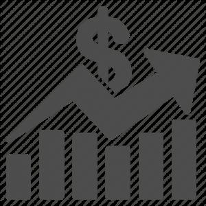 عرضه سهام دولتی در بورس و گمرک